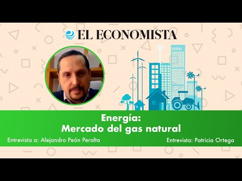 Energía: Mercado del gas natural